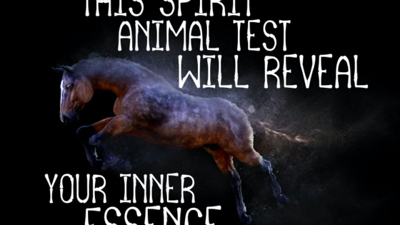 Choose your spirit animals and we'll tell you who you really are inside!