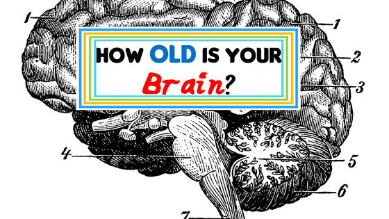 We ask you the questions, your brain answers, and you find out it's age! Find out now!