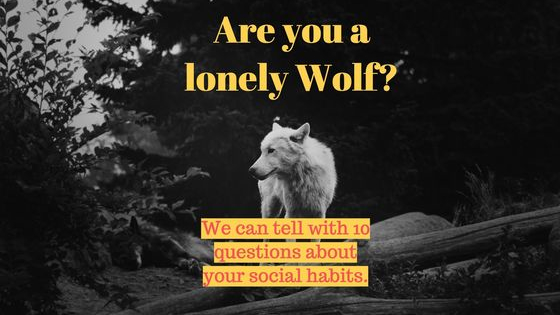 We can tell with 10 questions everything we need to know about your social habits.