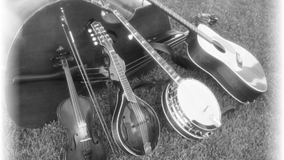 Which bluegrass instrument suits you the most, based on the following questions?