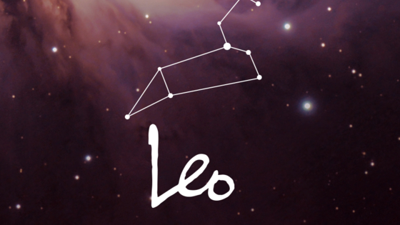 Leos are the fifth Zodiac sign in the Zodiacs, and are known for their confidence and being loyal. Which famous Leo are you most like?