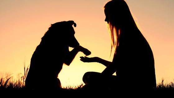 It's puppy love!