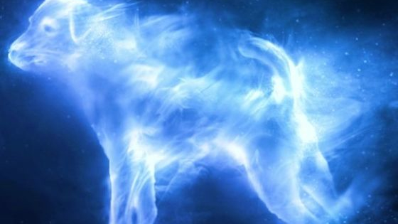 Are you a Harry Potter fan? Well, find out what your patronus is!