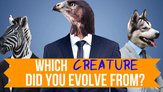 Were you born with the eye of the tiger? Do you float like a butterfly or sting like a bee? It's time to uncover which creature you actually evolved from!