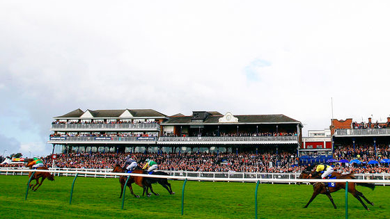 How much do you know about the Scottish Grand National?
