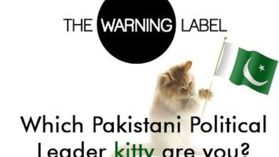 Take this quiz to find out which polikitty you are on the inside, and maybe on the outside too.