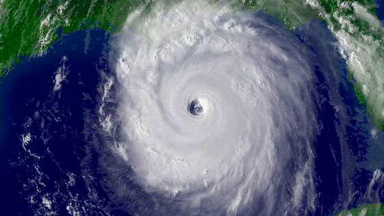 Test your hurricane and TV knowledge at the same time!