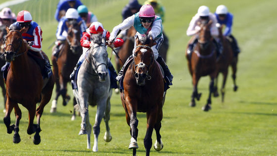 10 pictures, 10 2000 Guineas champions, can you get 100%?