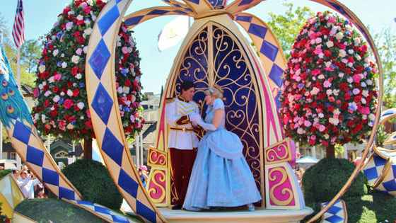 wish upon a star! discover which Disney Princess you are most like!