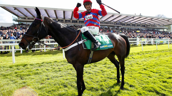 Can you name these famous racehorses that have won on the Sandown Jump Finale?