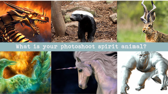 What should your photoshoot reflect about you and your business? Are you a rebel like the Honey Badger? Spiritual like the Unicorn? Love creating wealth for you and your team like the dragon? Take the quiz to discover what your imagery should be showing your audience.