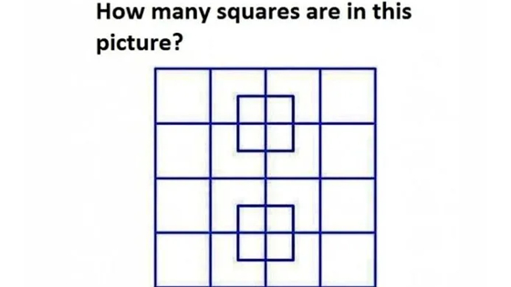 How many squares are in the picture? Count carefully!