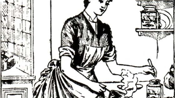 Fancy trying something new? Want a taste of the past? Then you've come to the right place. Here you will find out what Victorian recipe is right for you. Enjoy!