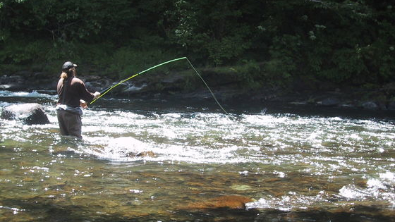 Your family and friends may not think so but prove them wrong by taking this quiz sponsored by http://www.trout-fly-fishing.com