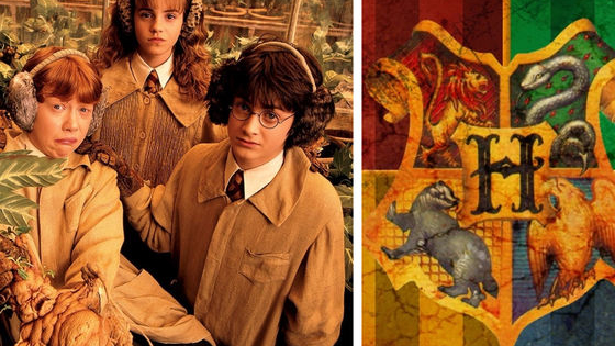 Find out what Hogwarts house the Sorting Hat would place you in by answering these quick questions on your favorite fall activities!