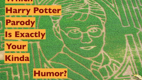 There are a ton of Harry Potter parodies out there, but which one reflects your personal brand of humor? What do you find SO funny? Take this Harry Potter quiz to find out which parody gets your funny bone going.