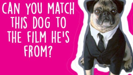 How well do you remember your canine pals from your favourite old school movies? Take the test and find out.