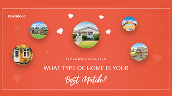 Still looking for your forever home? Take this quiz to find your perfect match.