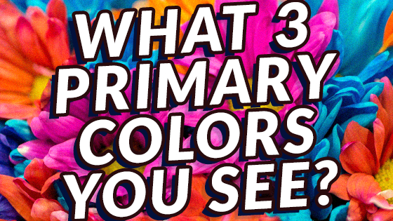 Let's delve into the red, yellow and blue, and see what they say about you!