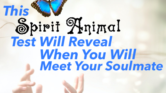 Did you know your spirit animal can tell you when you'll meet your soulmate? Yes it's true! Don't worry if you don't know your spirit animal just choose some below and let the magic happen!