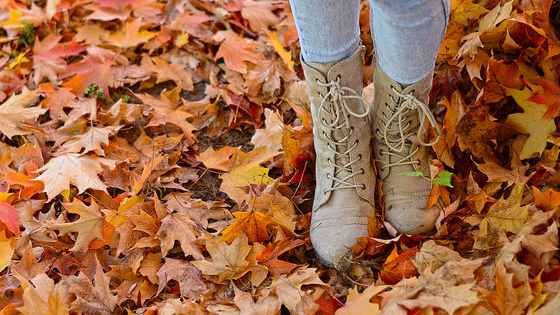 Are you oversized sweaters, pumpkin spice latte, or any other fall thing? Take this quiz to find out.