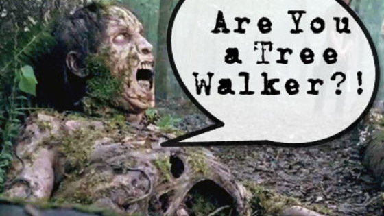 Are you a burning walker or a sewer walker?