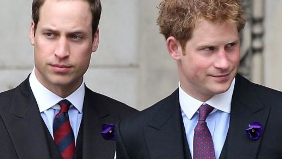 The two royal brothers couldn't be more different. Are you a lovable, freewheeling Harry or a serious, respectable William? Take this quiz to find out!
