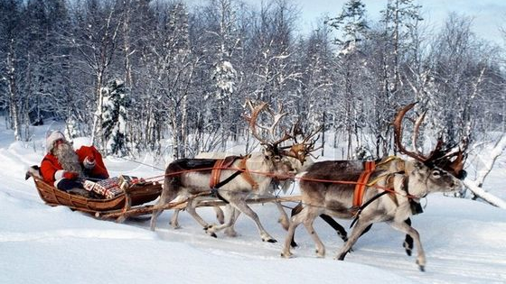 which of santas reindeer are you? take this test to find out