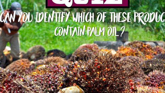 Answer 'true' if you think it contains palm oil or 'false' if you think it doesn't!