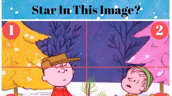 Just tell us which section you see our yellow Christmas star in for each image and find out how excellent your holiday vision is!