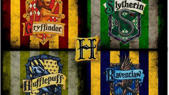 Find out with this highly accurate quiz tested using actual harry potter characters. Which one will it be?