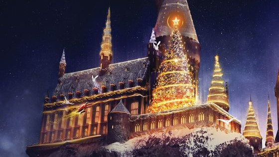 """Christmas is especially """"magical"""" at Hogwarts! Spend Christmas in the infamous wizarding school, and we'll sort you into a Hogwarts house!"""