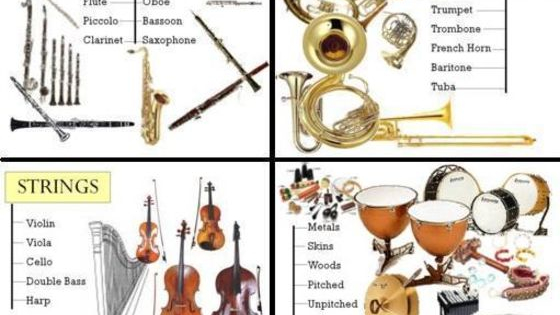 What instrument family are you? Let's find out!