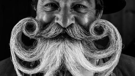 These beards are award winning, literally.
