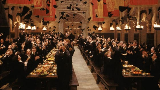 15 years after the very first Harry Potter movie, the true fans are tested on who they actually remember.. and we're not talking about Ron and Hermione.