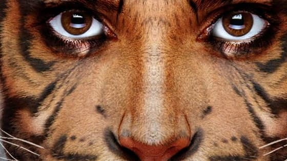 Do you think for like a monkey or a cheetah? A cat or dog? Lets find out!
