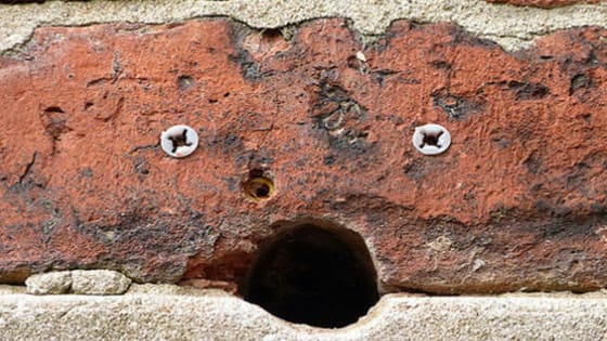 According to researchers only extremely neurotic people see faces in almost all everyday objects. Are you one of them?