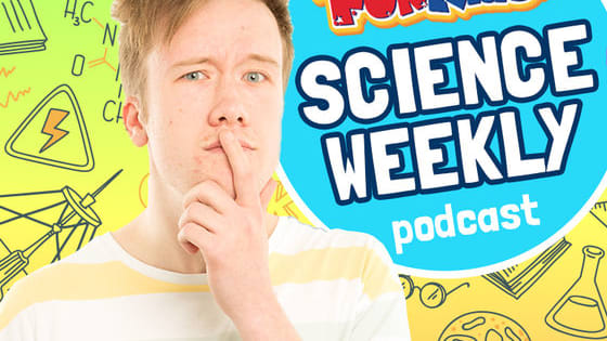 Every Saturday at 2pm the Fun Kids Science Weekly podcast comes out!  The Fun Kids Science Weekly is a 20-minute show that you can download to your phone or tablet, or listen to online.  It's a show that's packed full of clever people talking all about what they do as well as cool episodes where you can discover more about stuff around us.  Dan's been making episodes every week for over eight months now, so we thought it was time to test your Science Weekly knowledge...