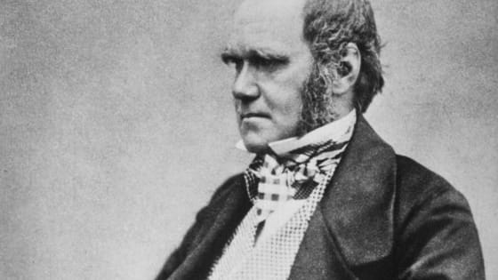 Charles Darwin led an incredibly interesting life, studying species from around the world and creating a scientific theory of evolution to explain biological change. Throughout his life he made many acquaintances, and many more adversaries. Take this quiz to see who you best relate to!
