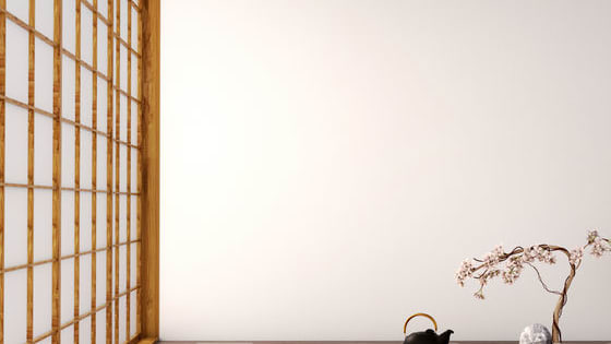 Japan has a new hobby: Minimalism. Proponents claim to be much happier before, but why is that? Let's explore what minimalism is and how it works.