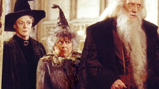 We can only hope to be as put together as Professor McGonagall or as delightfully whimsical as Professor Dumbledore in old age. Who will you age into? Find out here!