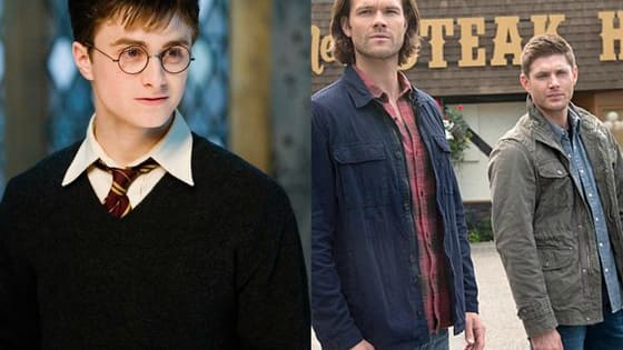 We're down to the last two! But will Harry Potter or Supernatural's Winchesters win? Vote!