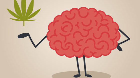 Find out how well you can separate cannabis facts from the fiction.
