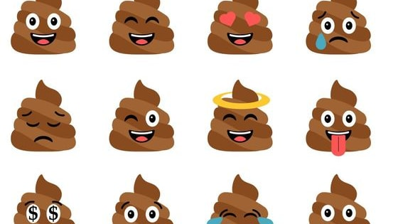 Answer a bunch of questions that have absolutely no relevance to poop to discover what type of poop you are www.hahablah.com