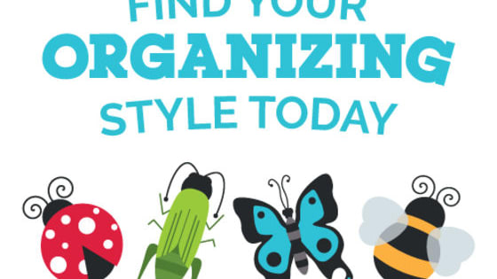 Learn the tips and tricks to get and stay organized for your unique organizing style.  What ClutterBug are you?