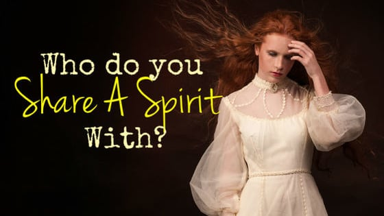 Does the spirit move you?