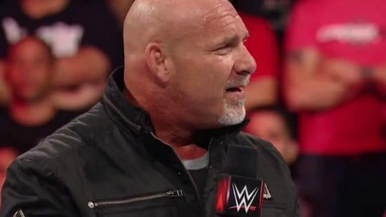 From 1998 WCW to his 2016 WWE return, Bill Goldberg has carved quite the path in the professional wrestling world.