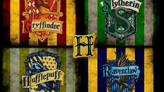 Gryffindor? Ravenclaw? Hufflepuff? Slytherin?