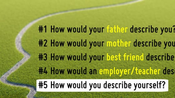 Answer the following questions as honestly as you can.