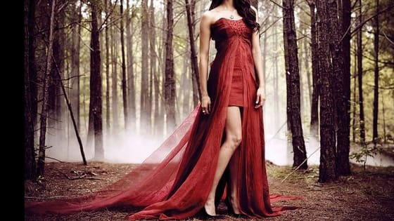 "Find out which of the girls, from ""The Vampire Diaries"" you are most like. Enjoy!"